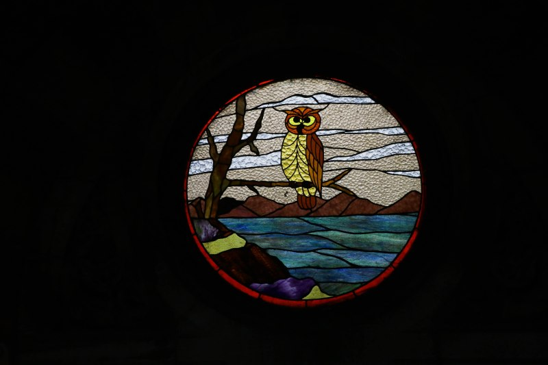 stained glass owl cst