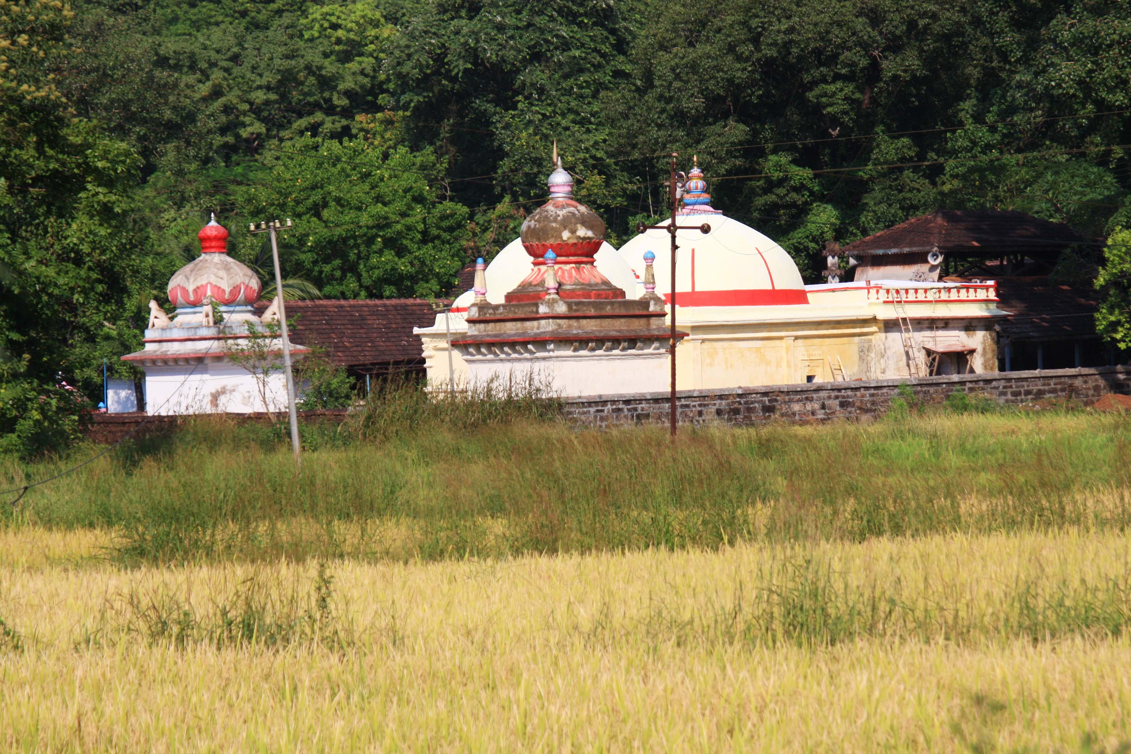 koleshwar from field