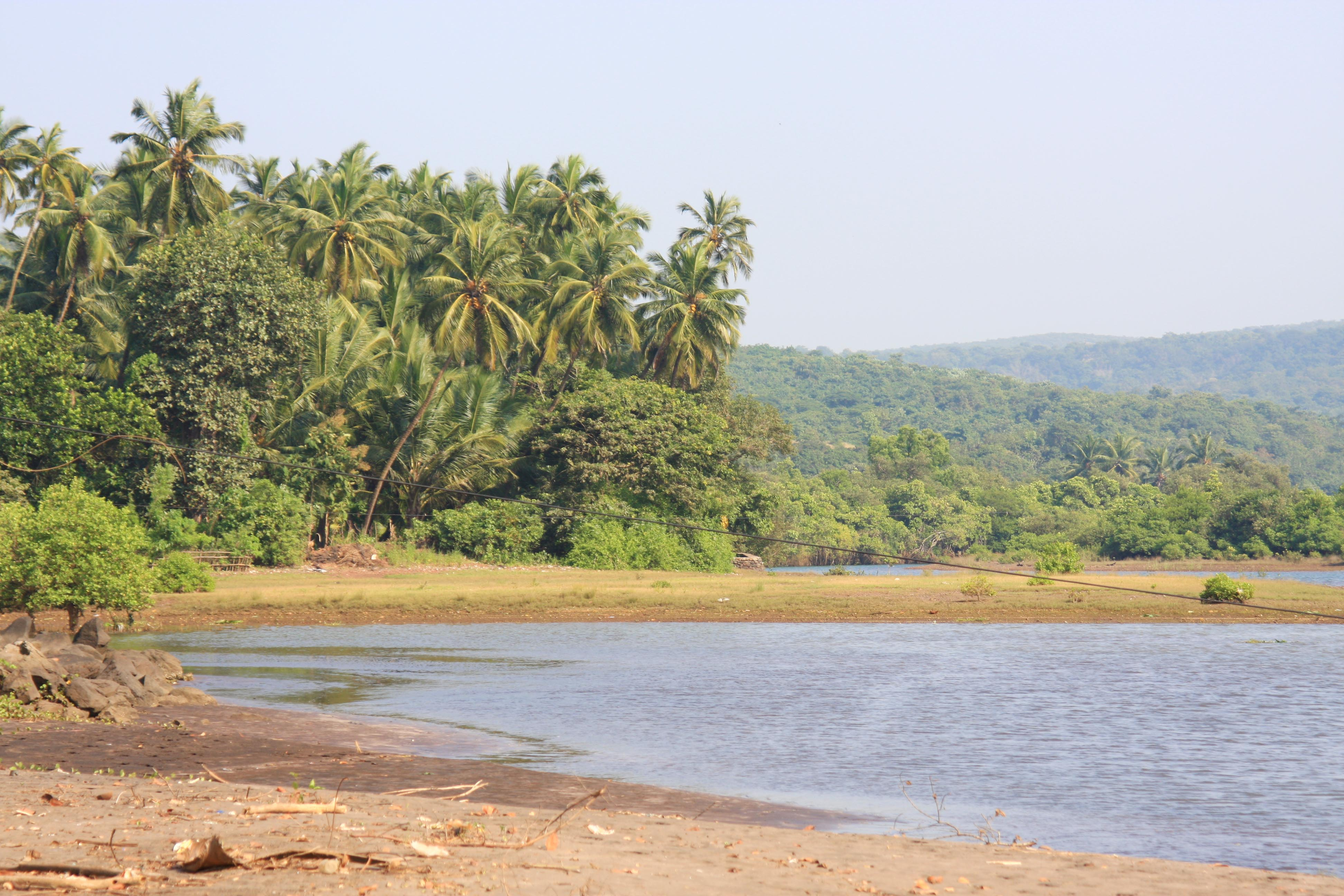 panchanadi river