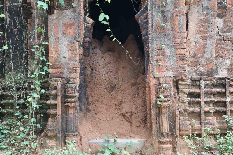 16 Bishnupur termite hill
