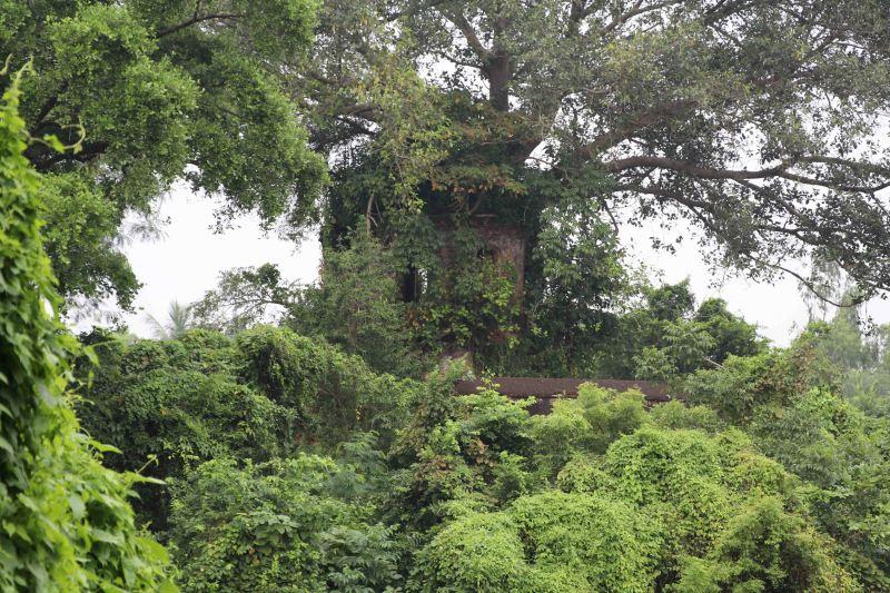 19 Bishnupur fort