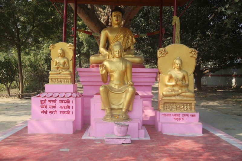 VNS sarnath buddha2